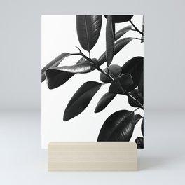 Ficus Elastica Black & White Vibes #1 #foliage #decor #art #society6 Mini Art Print