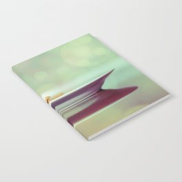 Hesse Notebook