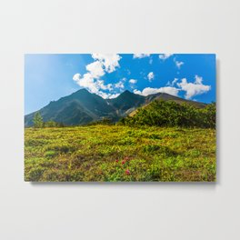 Vicinity of the volcano Vachkazhets Metal Print