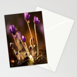 Hepaticas in The Glare Of The Sun #decor #society6 #buyart Stationery Cards