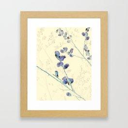 Pussy Willows 4 - IA Framed Art Print