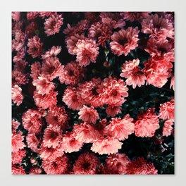 Flowers / Atchison, KS Canvas Print