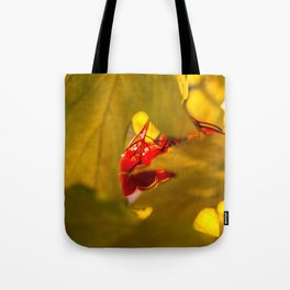 Autumn Fruits - Squashberry Tote Bag