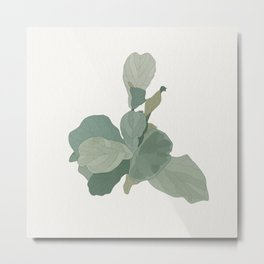 Rachel's Fiddle Leaf Metal Print