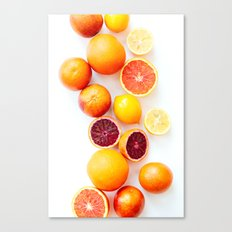 Winter Citrus 2 Canvas Print
