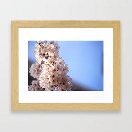 Lush Bloom Framed Art Print