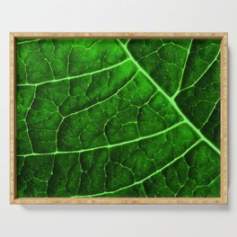 LEAF STRUCTURE GREENERY no2 Serving Tray