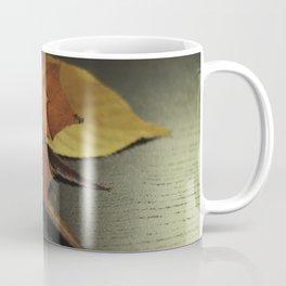 autumn arranged Coffee Mug