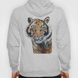 Tiger, Tiger Hoody