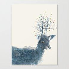 little blossom Canvas Print