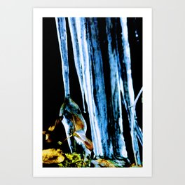 Iced in the northern boreal forest Art Print