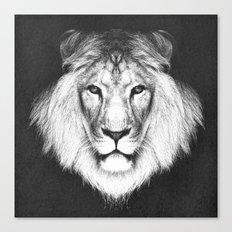 LION 5 Canvas Print
