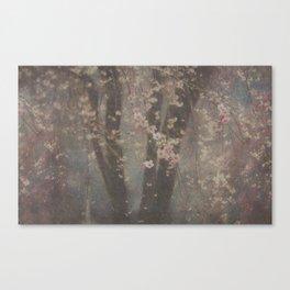 Flores de cereza Canvas Print