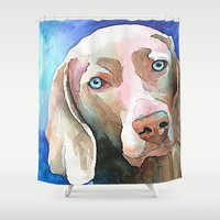 greg guillemin Shower Curtains featuring Greg The Weimaraner by bmeow