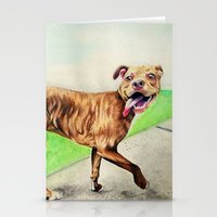 pitbull Stationery Cards featuring pitbull by Shannon Gordy
