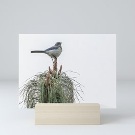 Top of The World Mini Art Print