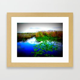 Marshes Framed Art Print