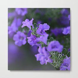 Purple Flowers In Garden Fine Art Photo Metal Print