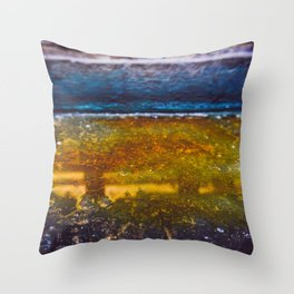 Color Dye and Water  - Two Throw Pillow
