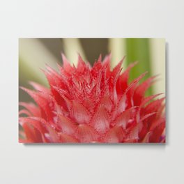Prickly Heart Metal Print