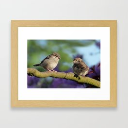 Two birds on a tree Framed Art Print