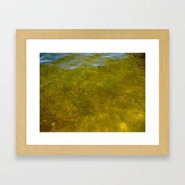 Golden Greenies Framed Art Print