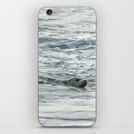 Harbor Seal, No. 2 iPhone Skin