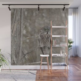 Great Grey Owl Wall Mural