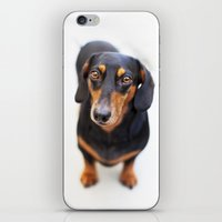 harley iPhone & iPod Skins featuring Harley by Sherman Photography