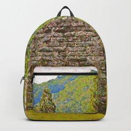 Shenandoah Confluence Backpack