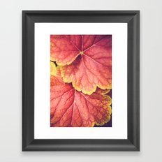 Two Leaves Framed Art Print