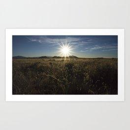 Sun Over the Grass Art Print