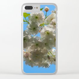White spring blossom, blue sky Clear iPhone Case