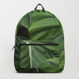 Colocasia II Backpack