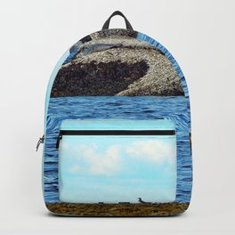 Seals and Birds Basking in the Sun Backpack