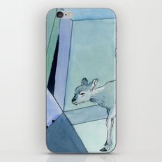 let you iPhone & iPod Skin