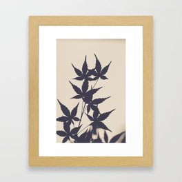 Leaves' Silhouette  Framed Art Print