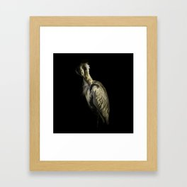Grey Heron Portrait Framed Art Print