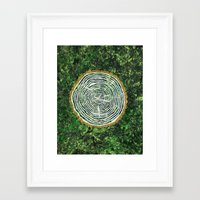 tree rings Framed Art Prints featuring Tree Rings by Zoë Miller