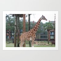 giraff collection Art Print