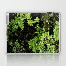 Textures - Moss Laptop & iPad Skin
