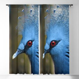 Victoria Crowned Pigeon Blackout Curtain