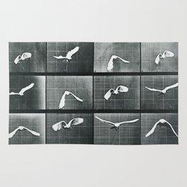 Time Lapse Motion Study Bird Monochrome Rug