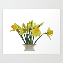 Daffodils in a vase watercolour painting Art Print