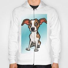 Miso (Beagle) Hoody