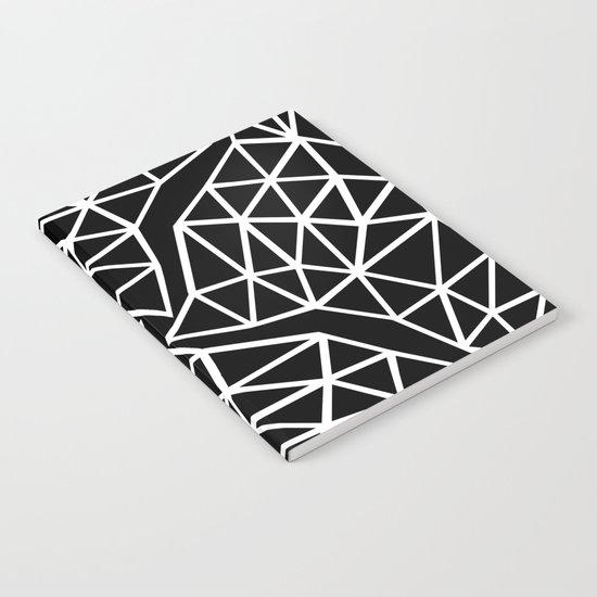 Seg Colide Notebook