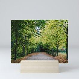 Fall path Mini Art Print