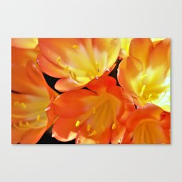 Orange Yellow Flowers by Reay of Light Canvas Print