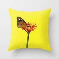 African Monarch Throw Pillow