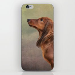 Dog breed long haired dachshund portrait oil painting iPhone Skin